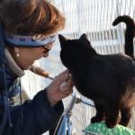 DIVNOOOO: Slavica svakoga dana hrani napuštene pse i mačke na Peskari!