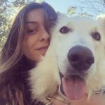 "Reprezentativki Srbije otrovan pas Grof u parku: ""Reagujte pre nego što nastrada neko dete""!"