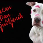 SREĆAN DAN ZALJUBLJENIH: Ovo je najdirljivija priča o psećoj ljubavi Boni i Bart!
