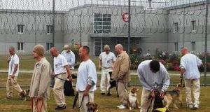 zatvorenici petface