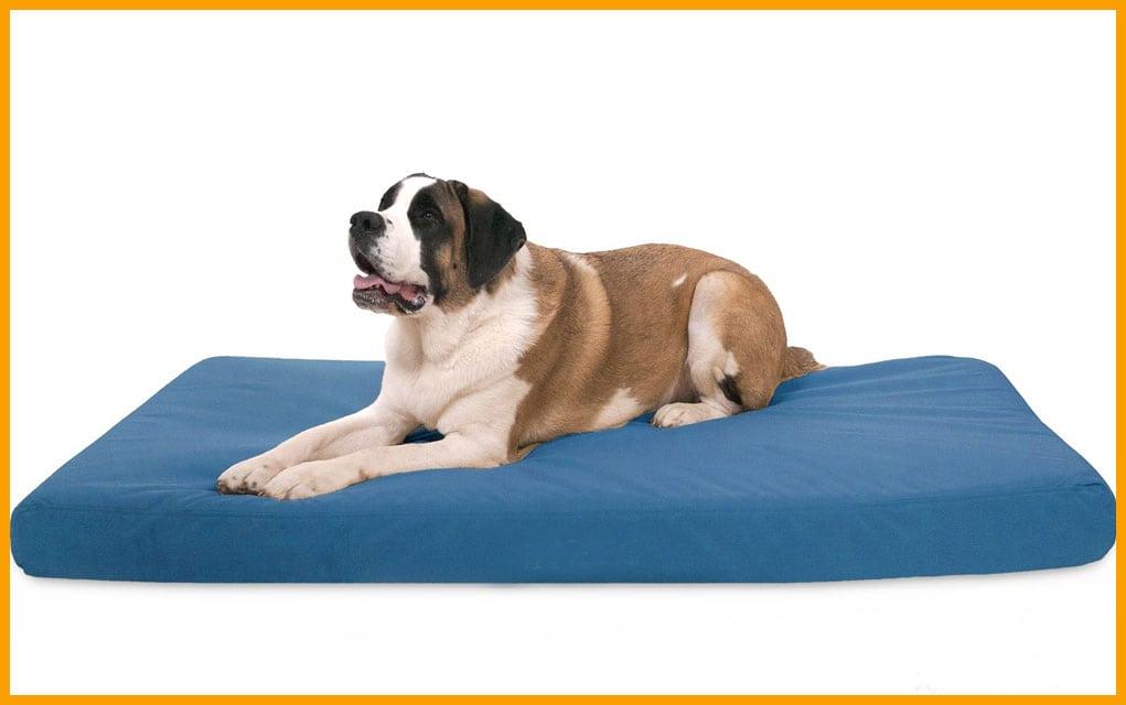 Ležaljke za pse i mačke