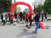 maraton petface