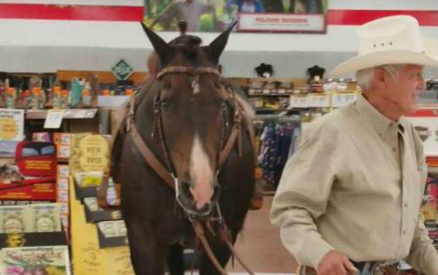konjem u radnju petface