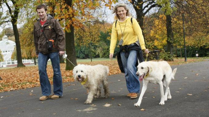 vlasnici sa psima petface