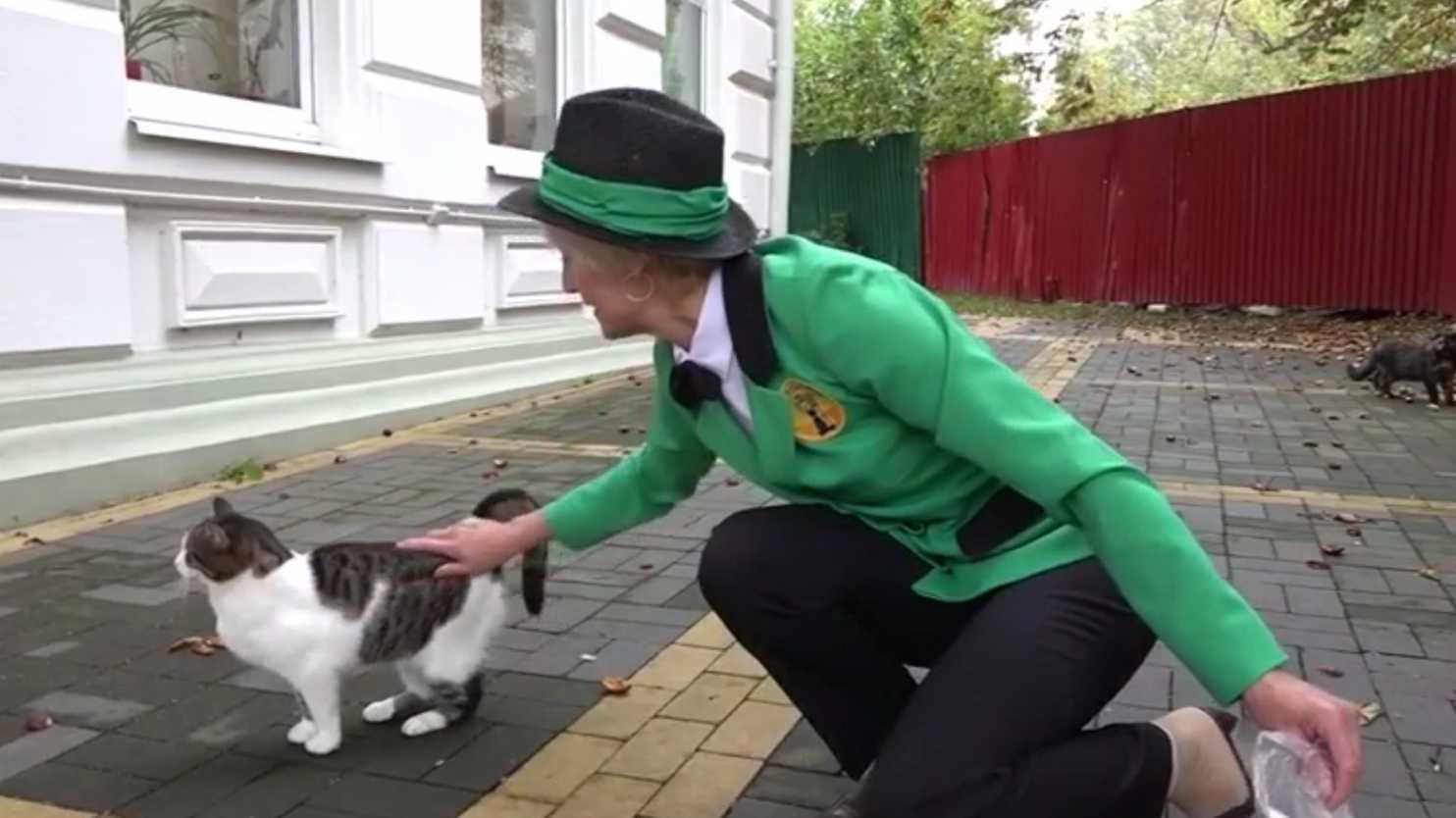 Šefica mačaka petface