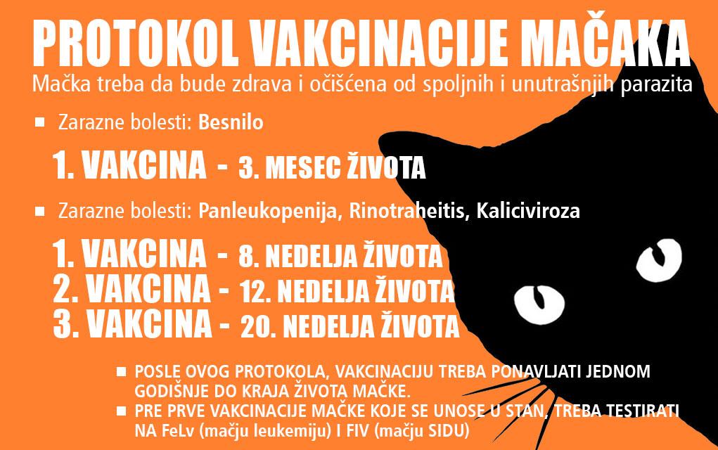 vakcinacija macaka petface