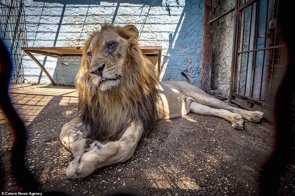 Privatni zoološki vrt petface2