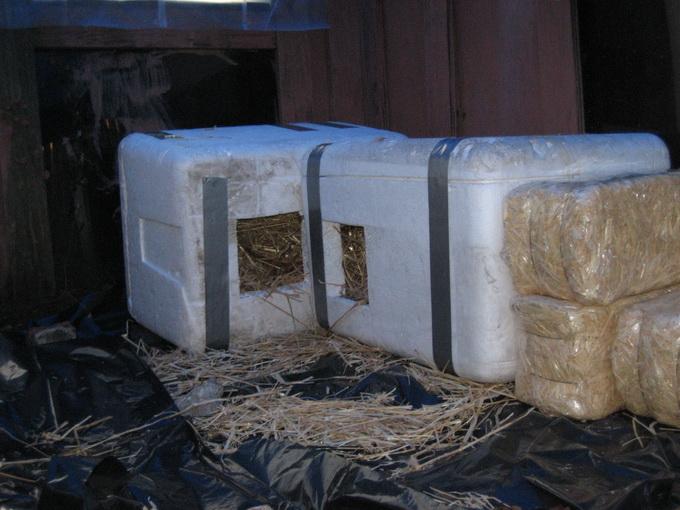 montažne kućice za napuštene pse petface21