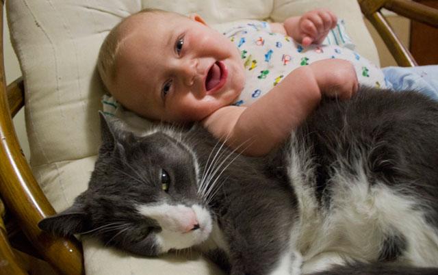 macke i bebe petface