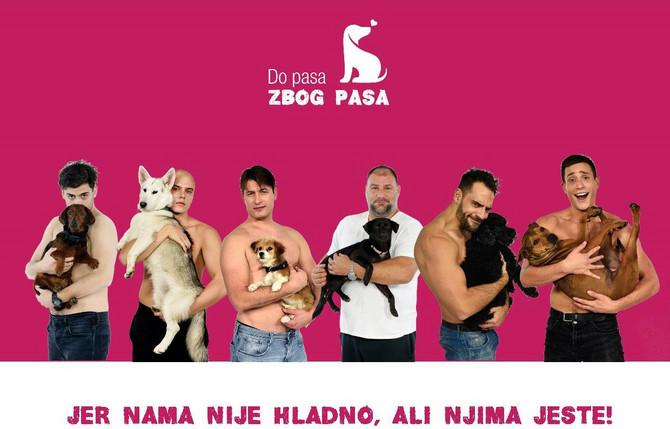 Zoran Pajić petface