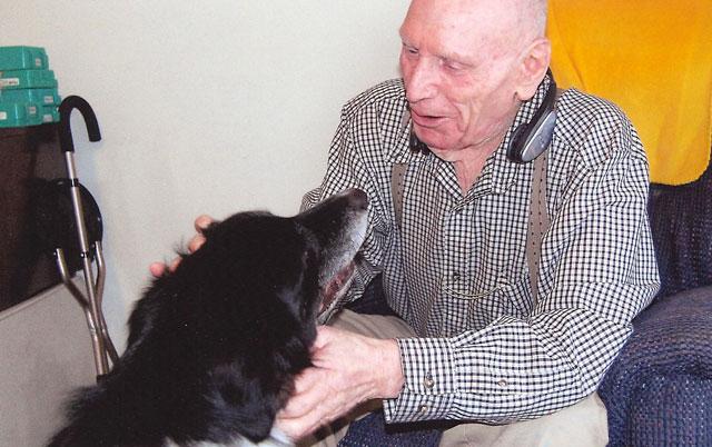 psi za starije osobe petface