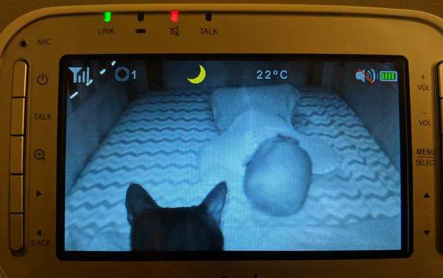Mama je uključila baby monitor i videla PRESLATKU SCENU!