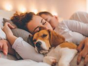 spavate sa svojim psom petface