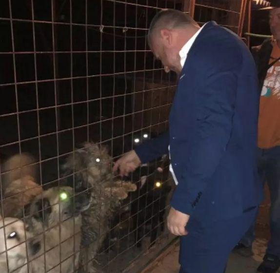 azil za životinje petface