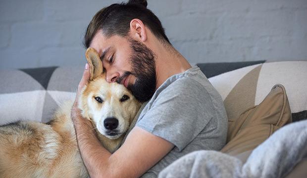 brinu o psima petface