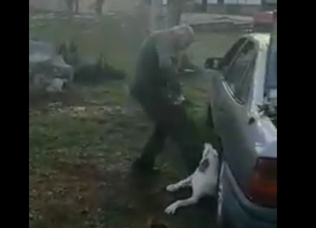 oduzeli psa vlasniku petface1