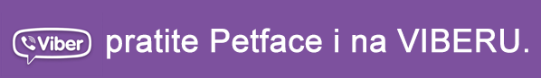 Petface Viber zajednica