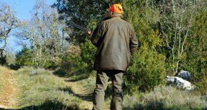lov u srbiji petface