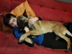 ovaj pas ceka eutanaziju petface