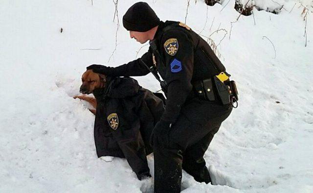 policajac skinuo jaknu petface