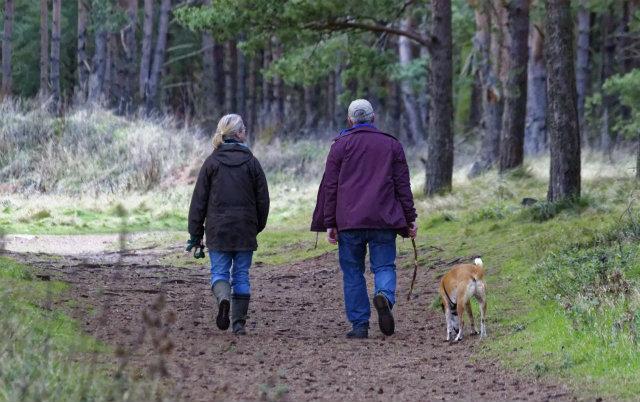 vlasnici pasa imaju zdravije srce
