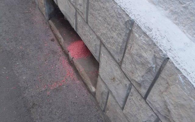 otrov na novosadskim ulicama petface
