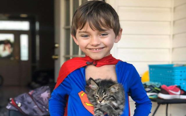 Kakvo drugarstvo dečaka i mačke. petface