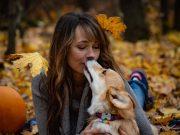zašto vas pas ljubi petface