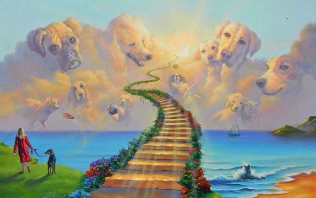 DA LI PSI IMAJU DUŠU: Večita dilema svih vlasnika pasa!