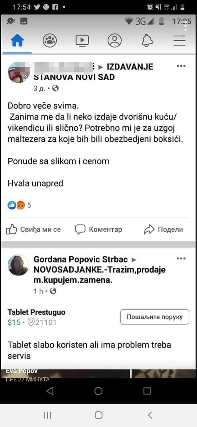 """""""ŠTANCERKA ŠTENADI""""?! Bivša učesnica rijalitija otkupljuje ženke maltezera za 100 evra!"""