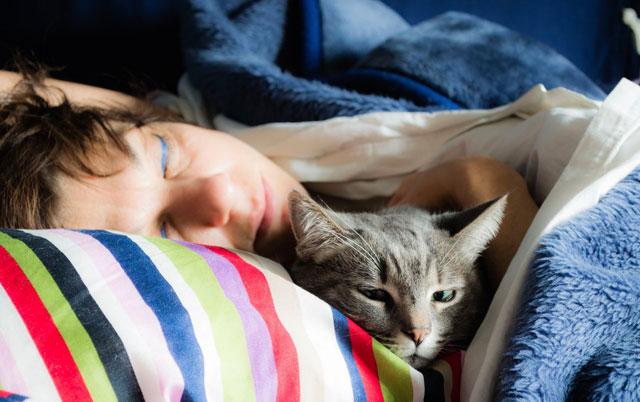 spavanje sa mačkom