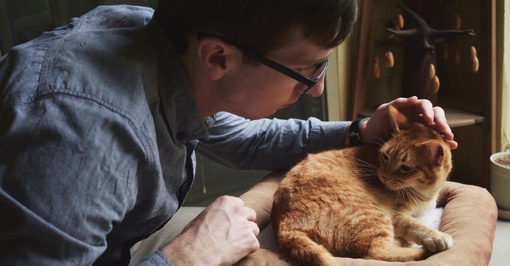 ZDRAVLJE VAŠEG LJUBIMCA JE U PITANJU! Ne ustručavajte se da pitate veterinara SVE!