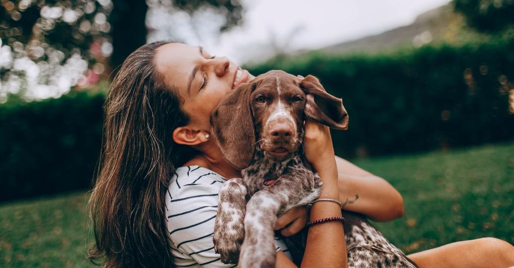 Za psa je važnije KAKVA JE ŠETNJA nego traje li ona dva sata - tvrde stručnjaci!