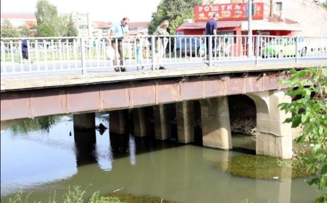 POMOR RIBA U BELICI: Građani UŽASNUTI prizorom ispod mosta u Jagodini! (FOTO)