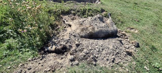 UZNEMIRUJUĆI PRIZOR U BELEGIŠU: Telo zakopanog konja uznemirilo prolaznike! (FOTO)