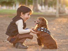 deca traže ljubimca na poklon