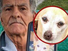 beskucniku ukrali psa
