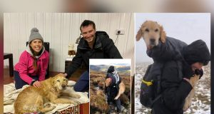 Spasli psa od smrzavanja