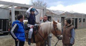 Terapijski konj Herceg