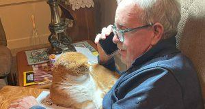 mačak i deda