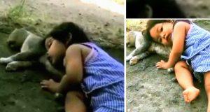 devojčica i mačka