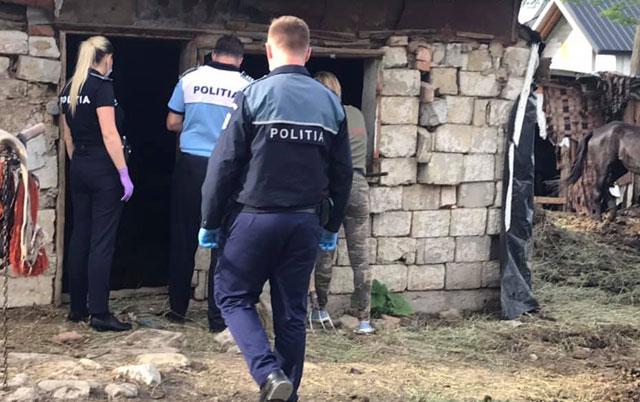 uhapšene ubice konja