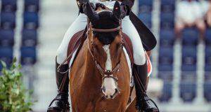 Uspavan konj na olimpijadi