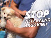 nelegalna trgovina životinjama