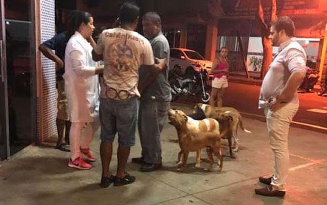 psi čekaju ispred bolnice
