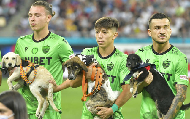 Fubaleri promovišu pse za udomljavanje